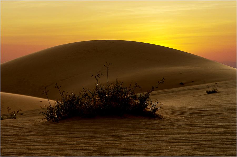 Sanddünen in Muine Vietnam
