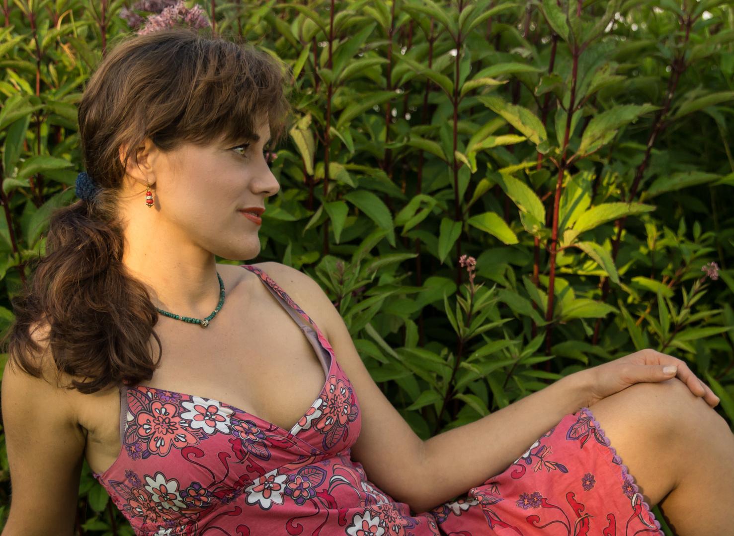 Sandra XII