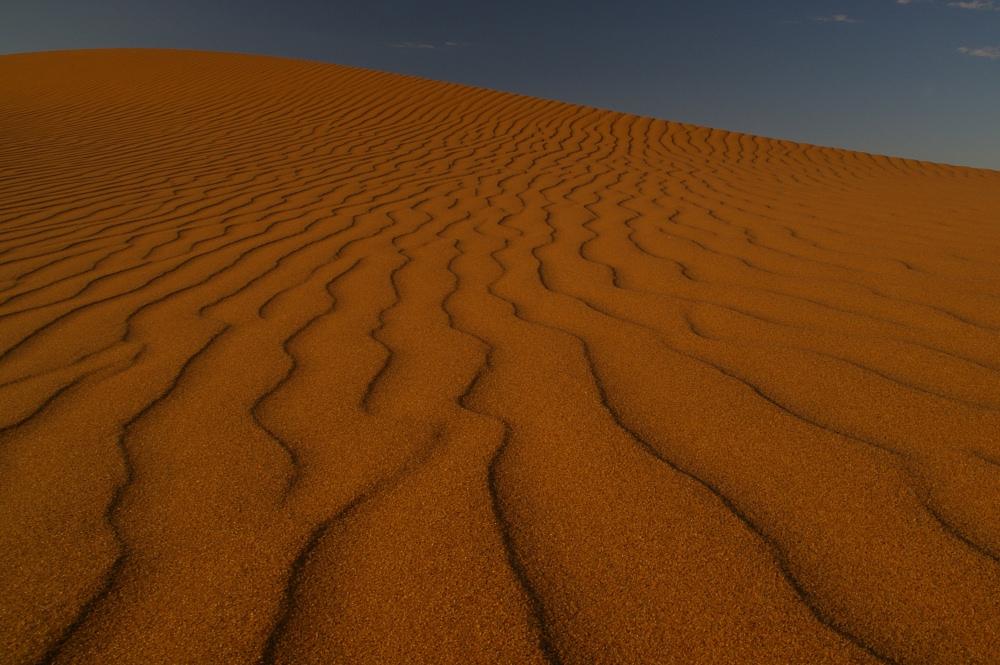 Sandrippel