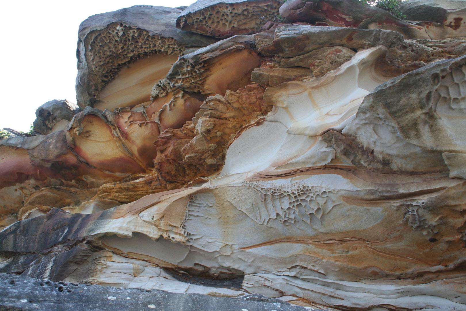 Sandsteinküste in der Botany Bay - Austr.