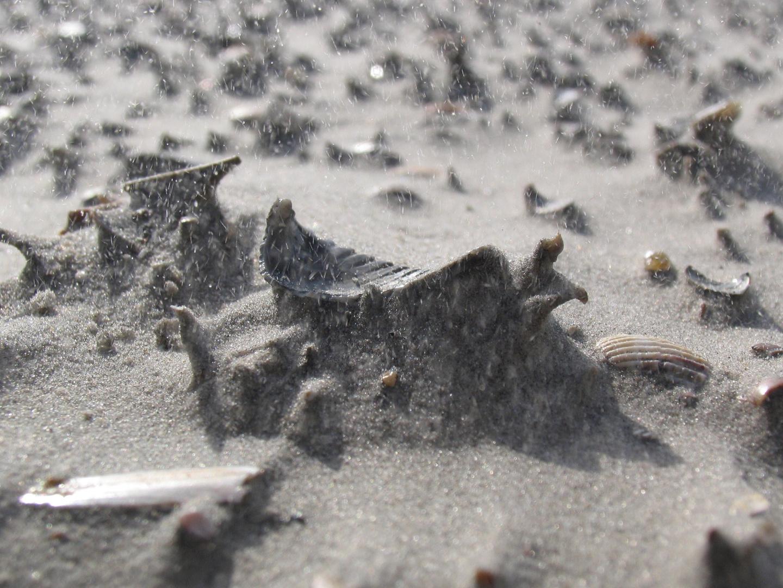 Sandsturm am Strand von St. Peter Ording