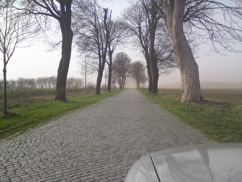 Sandsturm in Mecklenburg/Vorpommern