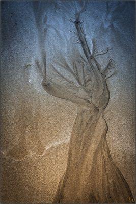"""sandtroll ( I ) """"der sich fürchtende""""......island 05/16"""