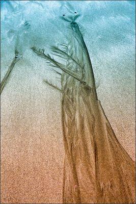 "sandtroll(in) II "" die den überblick behält"".....island 08/16"