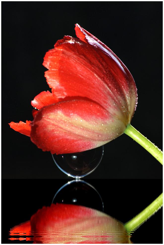 Sanduhr des lebens  Sanduhr des Lebens. Foto & Bild | experimente, gespiegelt, spezial ...