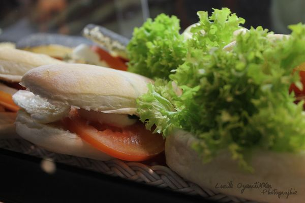 Sandwich #2