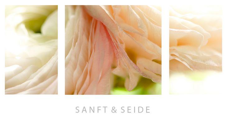 Sanft & Seide
