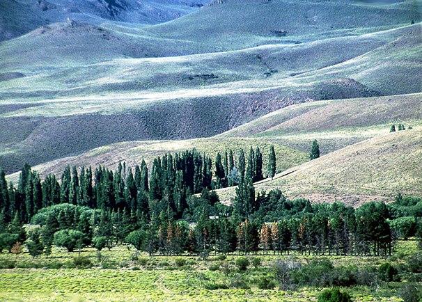 Sanfte Schwingungen in Patagonien