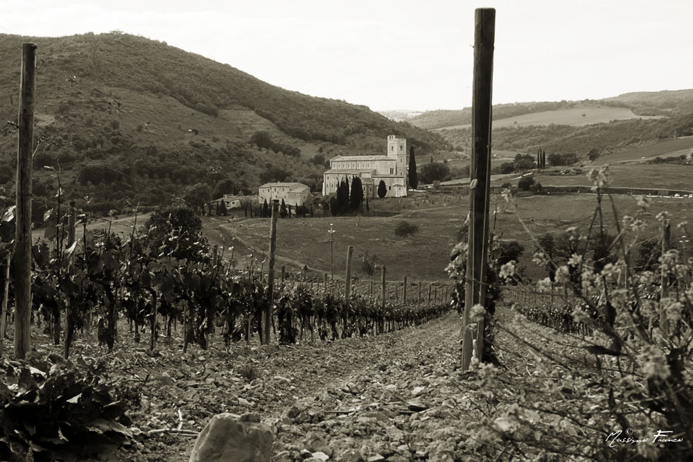 Sant'Antimo - Montalcino
