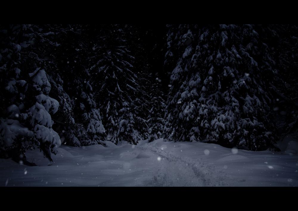 Santa's Spuren...