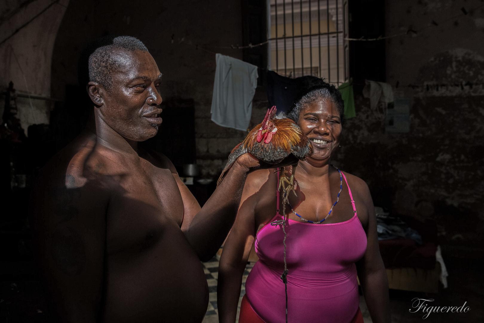 Santeria con gallo
