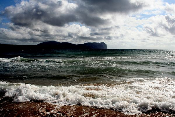 Sardegna - Promontorio di capocaccia