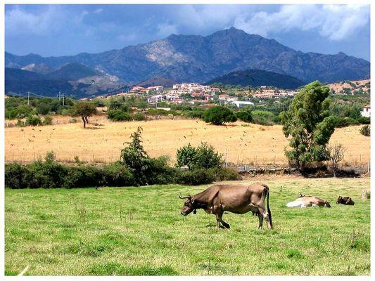 Sardiniens Osten