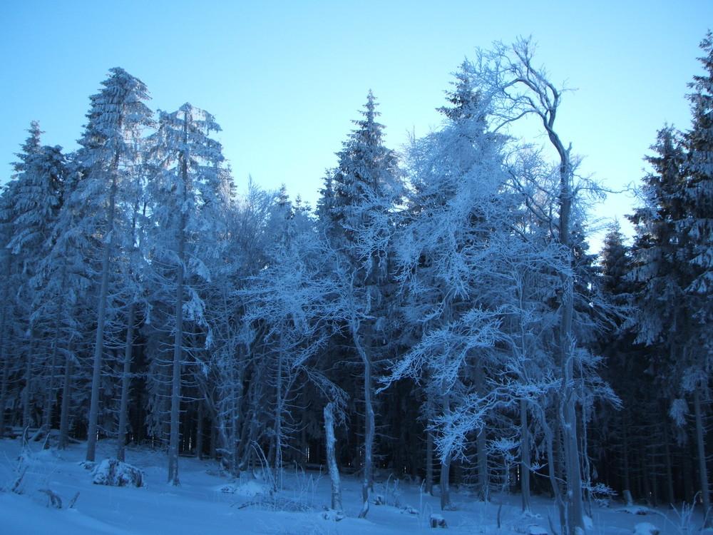 Sauerländische Winterimpression