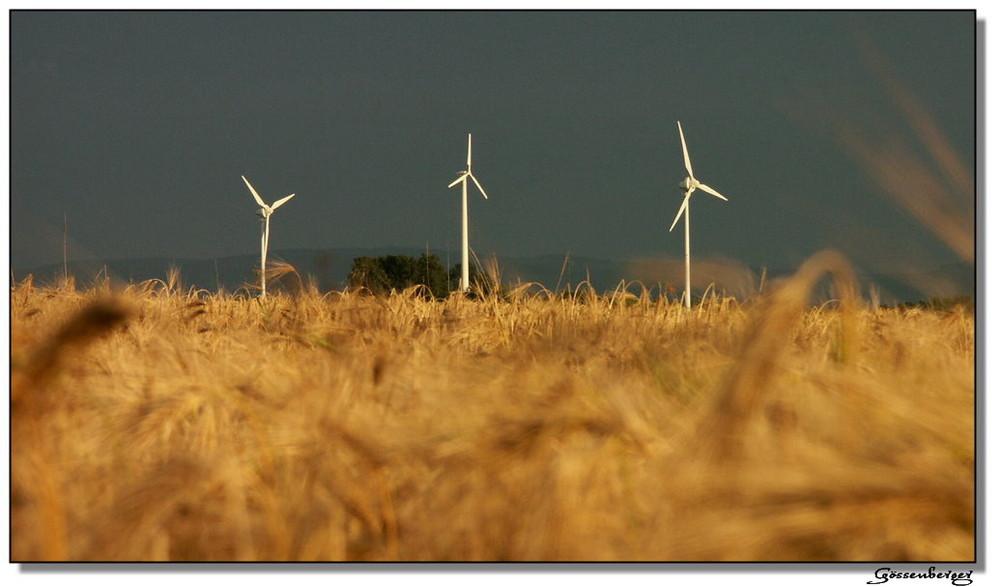 Sauerland = Powerland