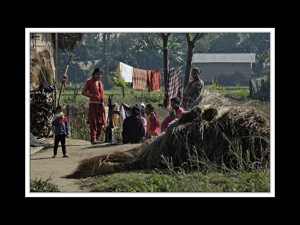 Sauraha-Chitwan 37