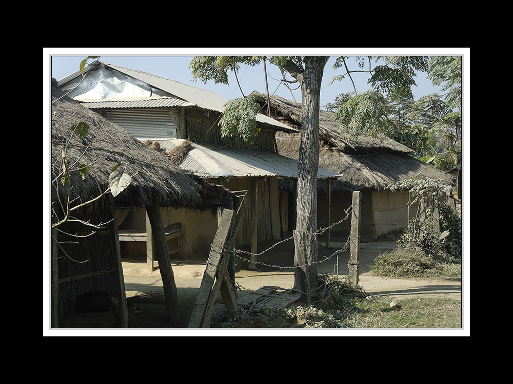 Sauraha-Chitwan 48