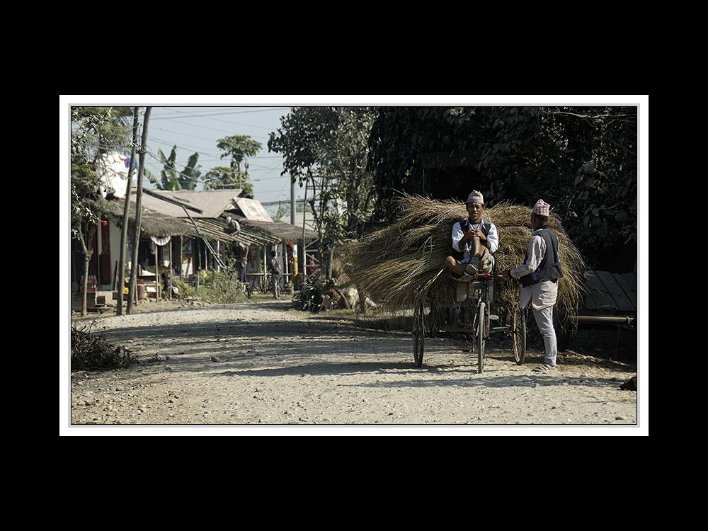 Sauraha-Chitwan 54