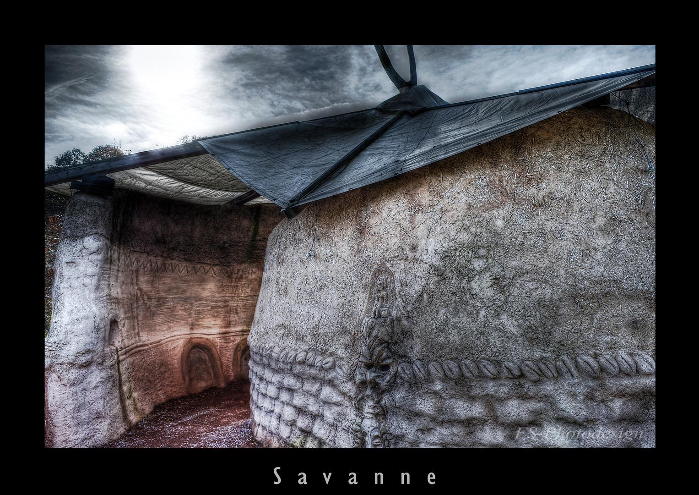 """Savanne"""