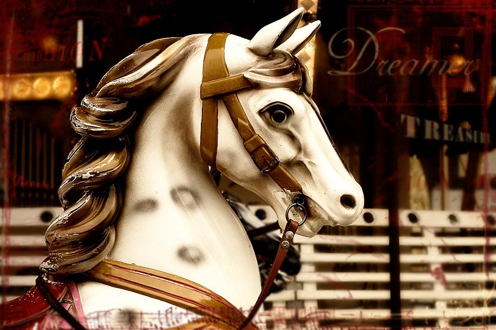 [Save a horse, ride a cowboy]