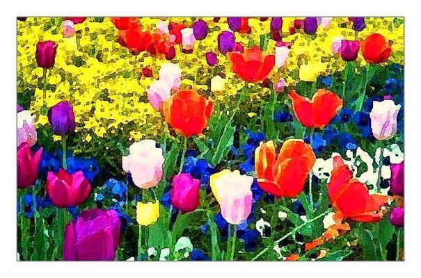 SBBB: Sehr Buntes Blumen-Bild