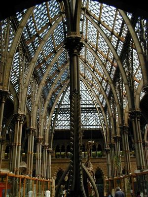 Sceleton Architecture