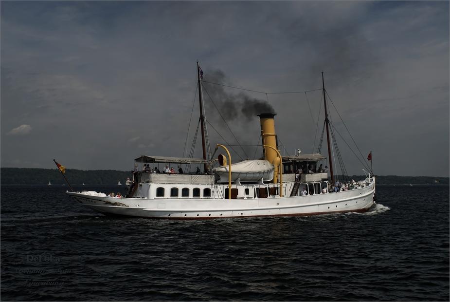 Schaarhörn (2)