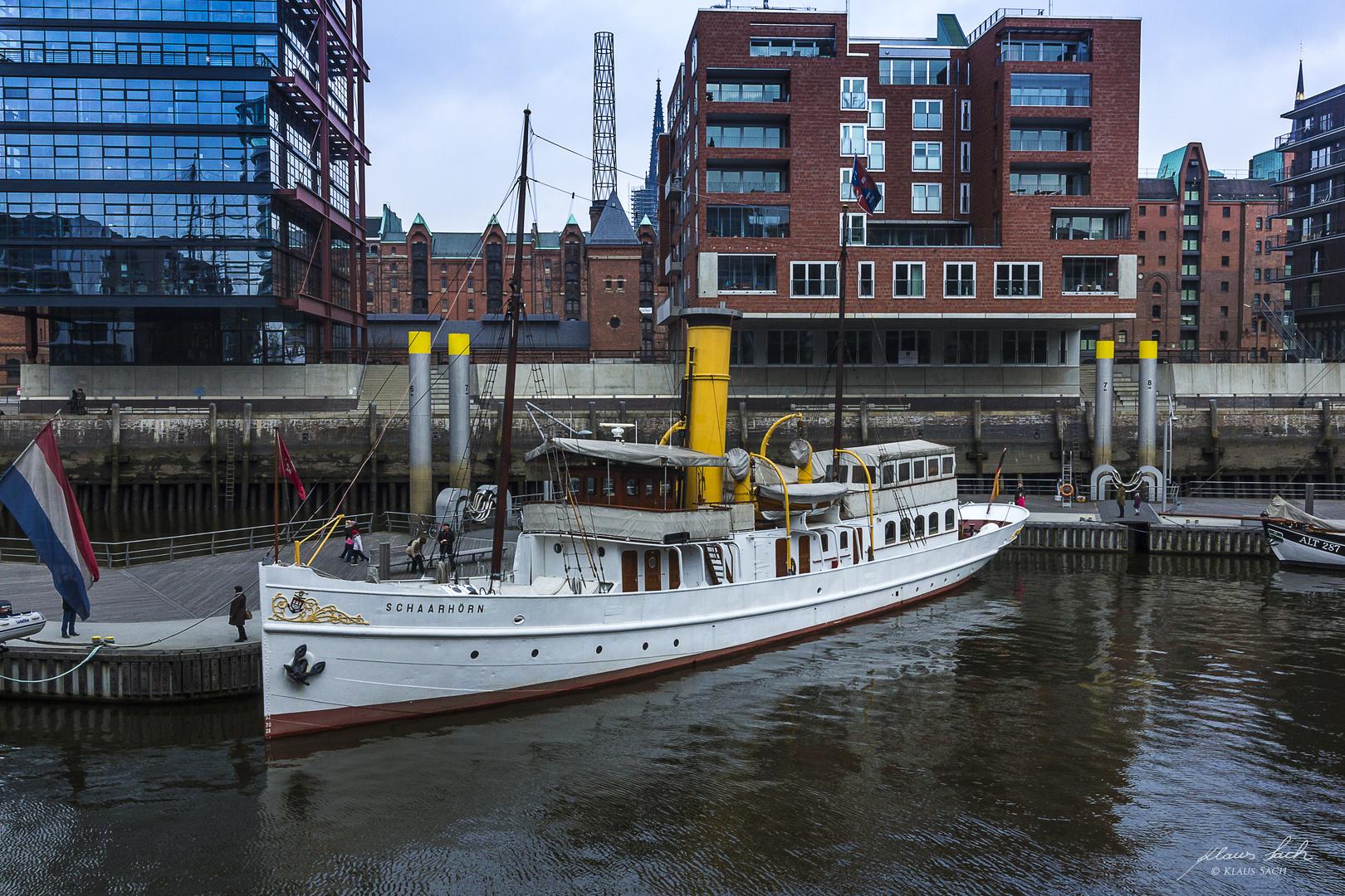 Schaarhörn im Sandtorhafen (Hamburg)