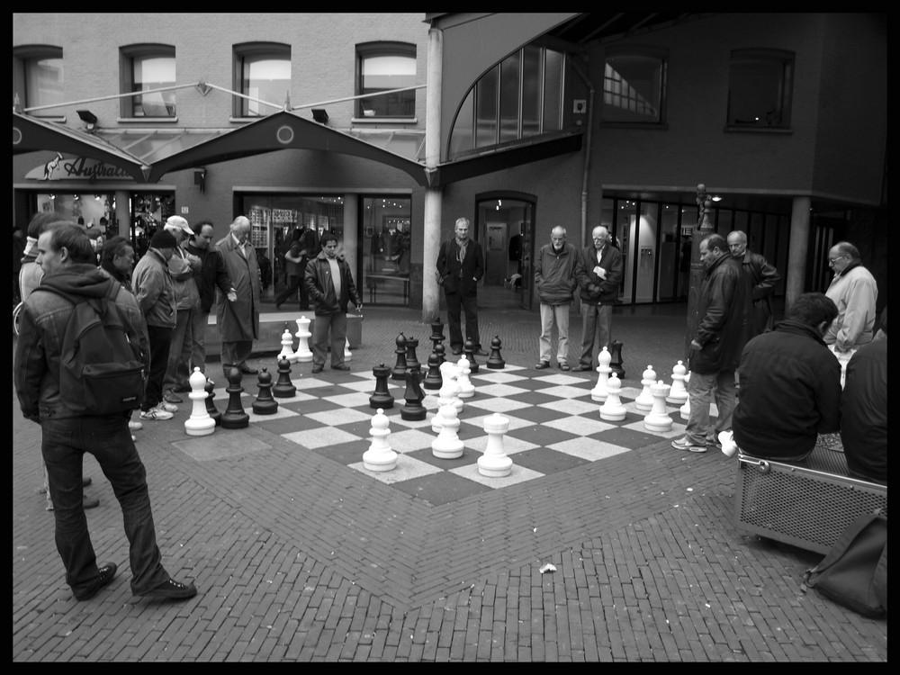 Schach für Große