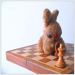 Schachmatt…