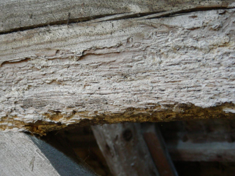 Schäden im Dachstuhl