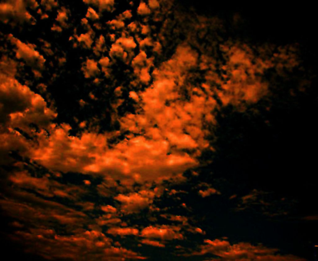 Schäfchen am Himmel, von der Sonne durchglüht.