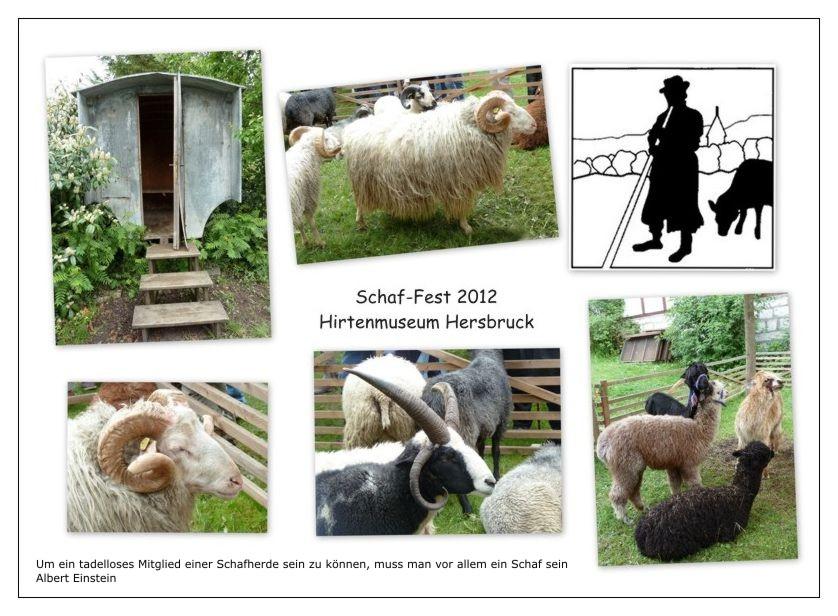 Schaf-Fest Hersbruck