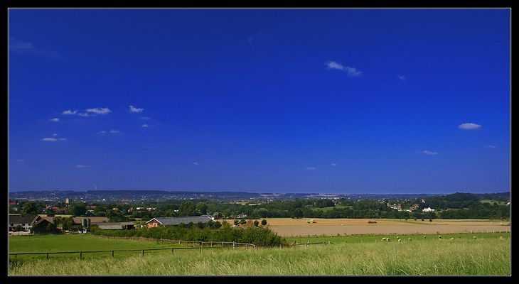 schafe - felder - wolken - blau