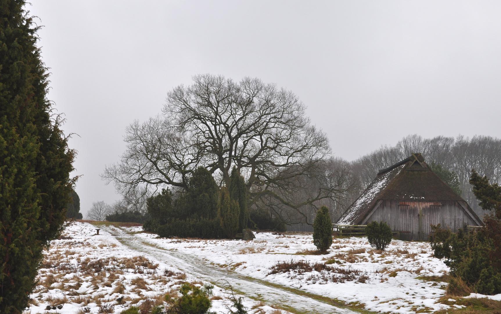 Schafstall in der Lüneburger Heide