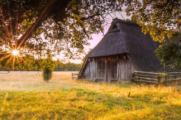 Schafstall_Lüneburger Heide
