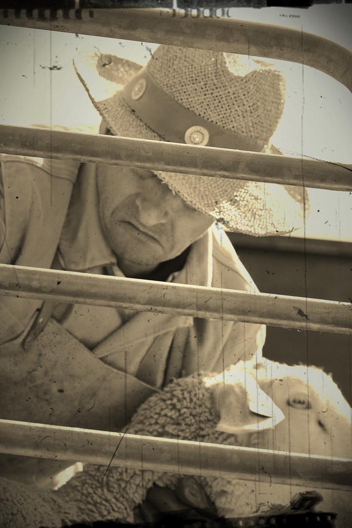 Schafwäscher