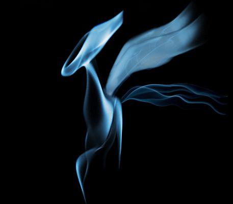 Schall & Rauch