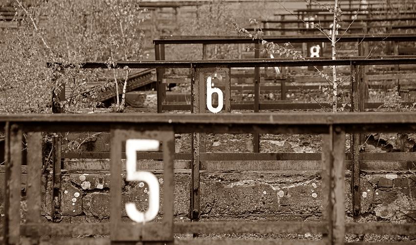 Scharfe Sechs II
