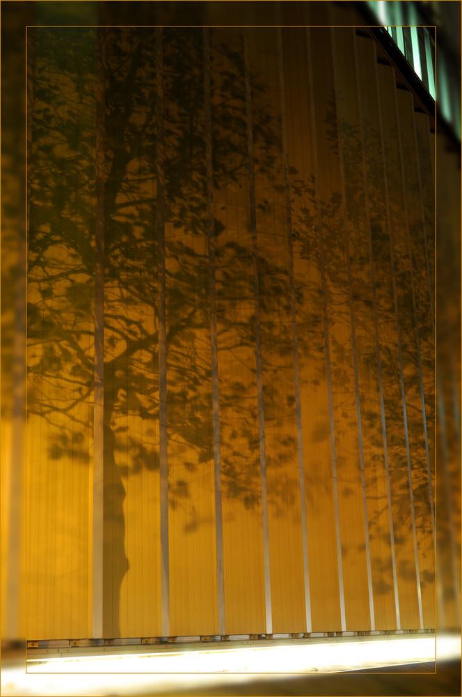 Schatten an einer Hauswand