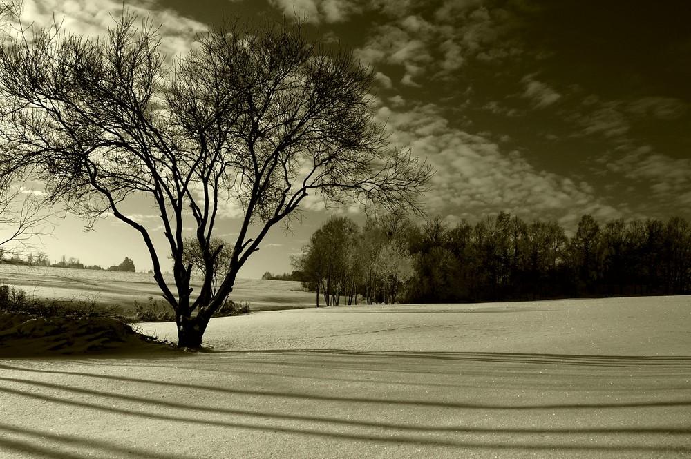 Schatten auf dem Schnee