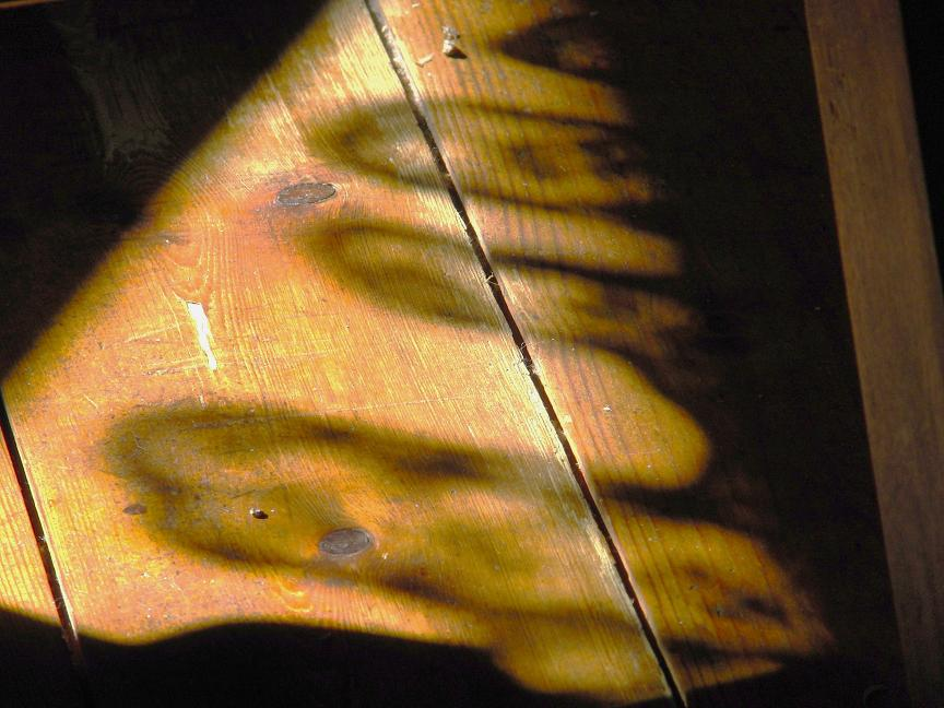 Schatten auf Holzboden