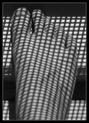 Schatten Nylon