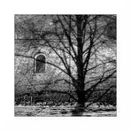 Schatten - Raum ohne Licht - 3