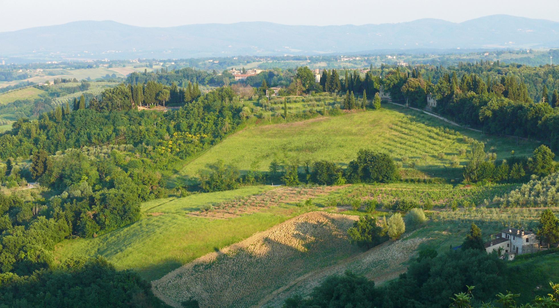Schatten-Skyline in der Landschaft von San Gimignano, Toskana 2011