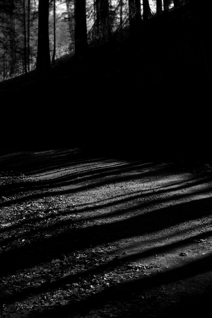 Schatten und Licht