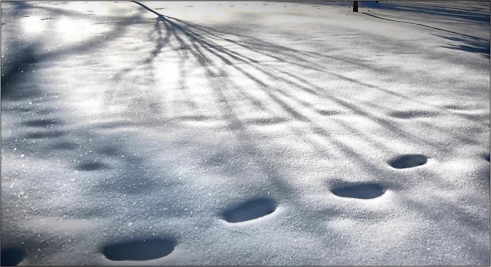 Schatten und Spuren