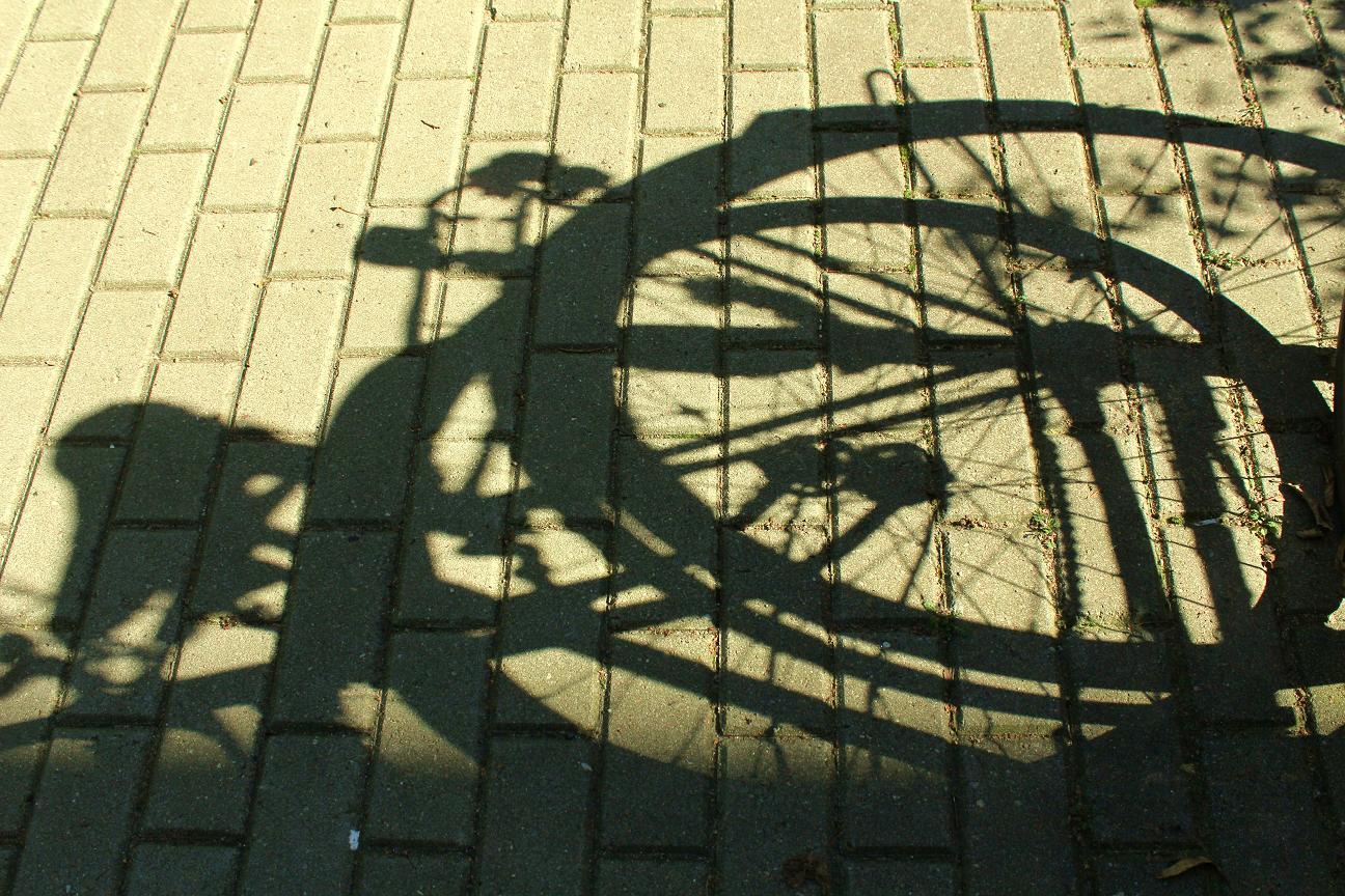 Schatten von Fahrrädern
