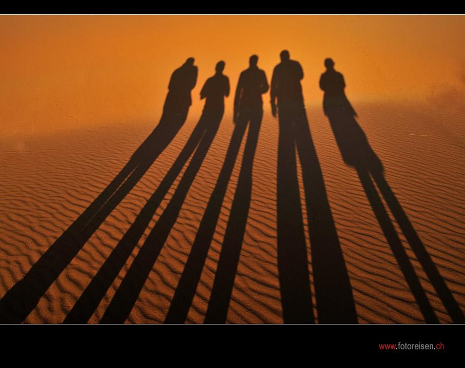 Schattendasein in der Namib