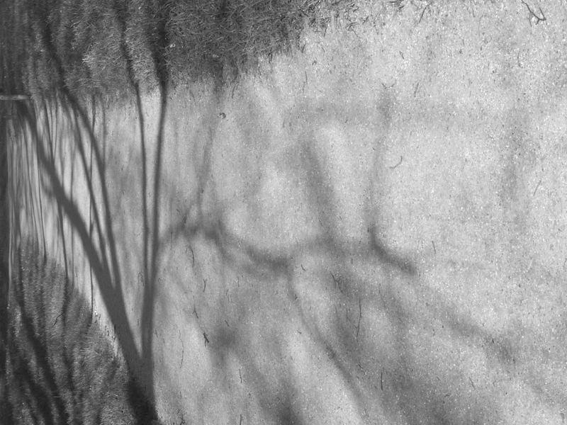 Schattenflucht